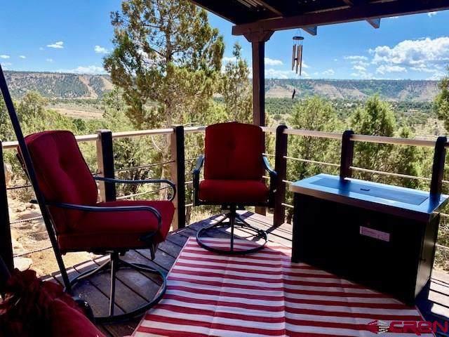 10689 County Road 213, Durango, CO 81303 (MLS #773350) :: Durango Mountain Realty