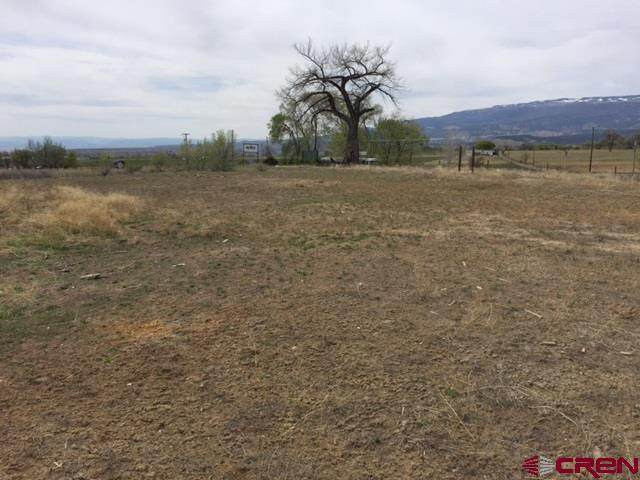 1685 S Grand Mesa Drive Vacant Land, Cedaredge, CO 81413 (MLS #773793) :: The Dawn Howe Group | Keller Williams Colorado West Realty