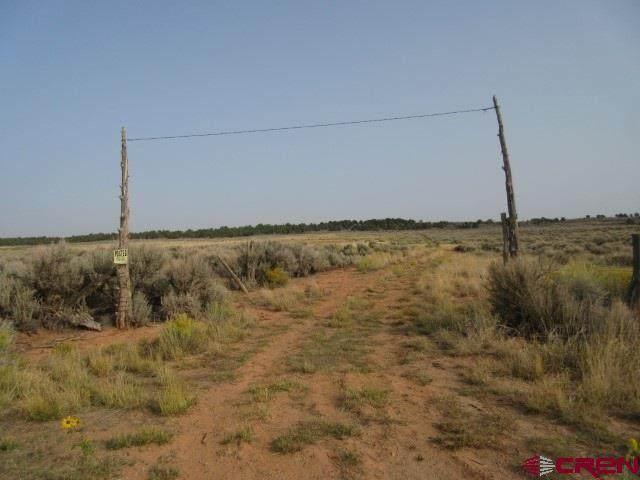 1001 Road K, Dove Creek, CO 81324 (MLS #774780) :: The Dawn Howe Group | Keller Williams Colorado West Realty