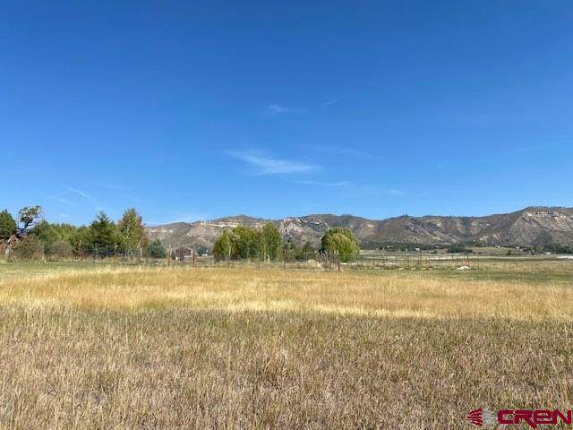 TBD Road 40.5, Mancos, CO 81328 (MLS #775012) :: The Dawn Howe Group | Keller Williams Colorado West Realty