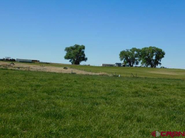 TBD Road 23, Cortez, CO 81321 (MLS #776009) :: The Dawn Howe Group | Keller Williams Colorado West Realty