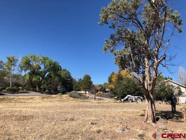 1145 SE 3rd Street, Cedaredge, CO 81413 (MLS #776045) :: The Dawn Howe Group | Keller Williams Colorado West Realty