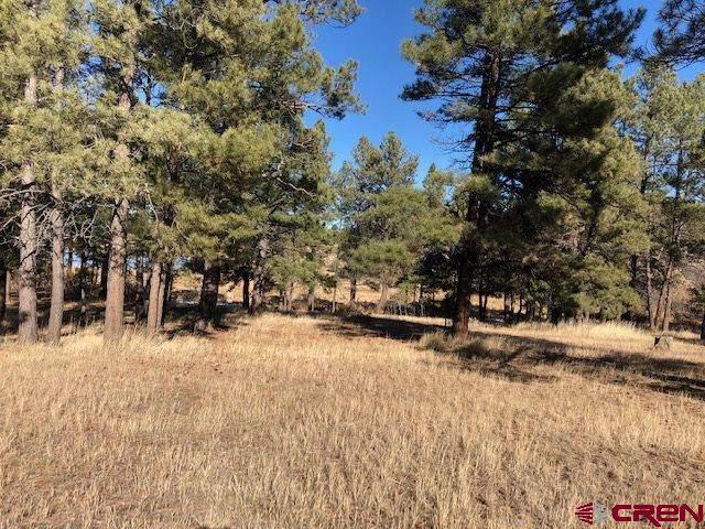 67 Glen Eaton Drive, Pagosa Springs, CO 81147 (MLS #776588) :: The Dawn Howe Group   Keller Williams Colorado West Realty