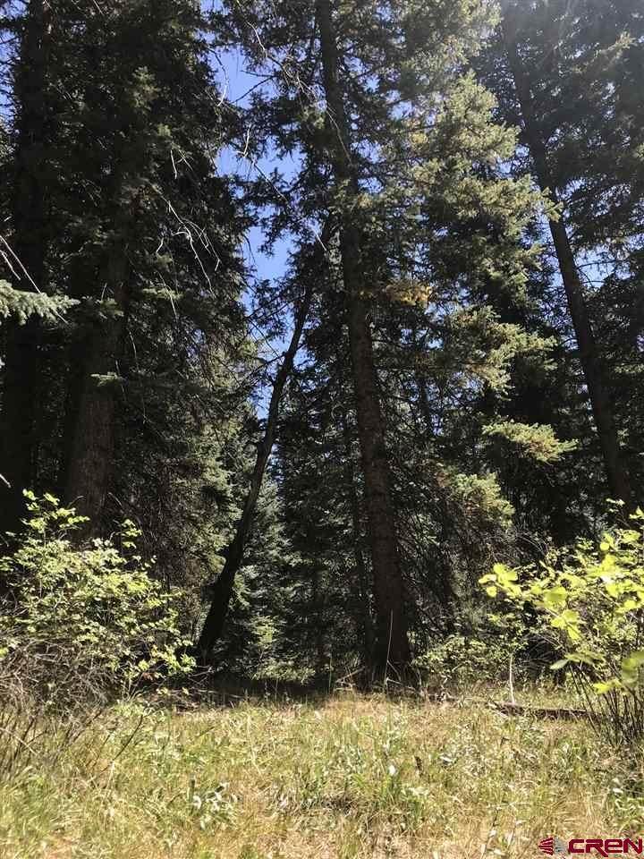 116 Sierra Verde Road - Photo 1