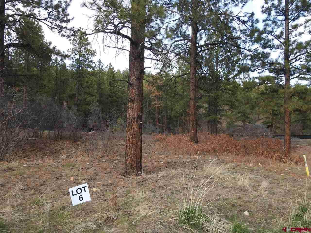 93 Canyon Pines (Lot 6) Place - Photo 1