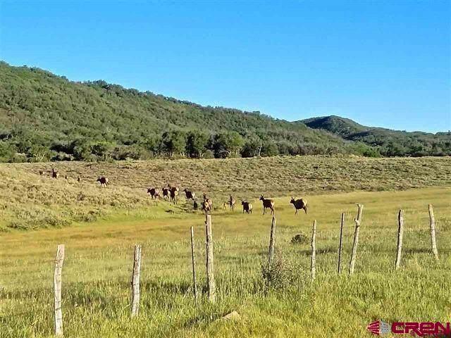 TBD Road H, Groundhog, CO 81323 (MLS #777792) :: The Dawn Howe Group   Keller Williams Colorado West Realty