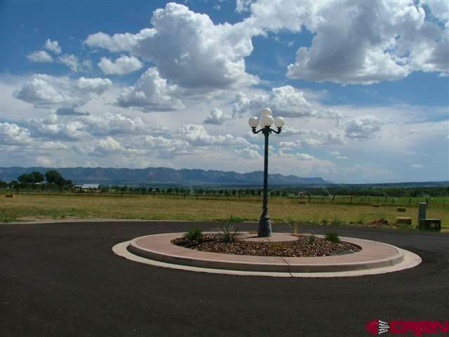 TBD Road 24.8, Dolores, CO 81323 (MLS #777808) :: The Dawn Howe Group | Keller Williams Colorado West Realty