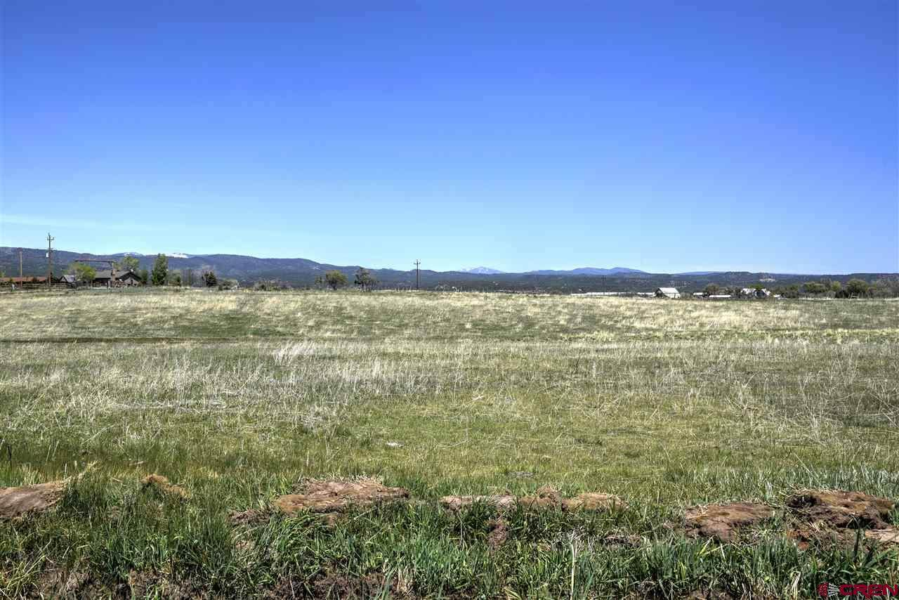 354 County Road 229 - Photo 1