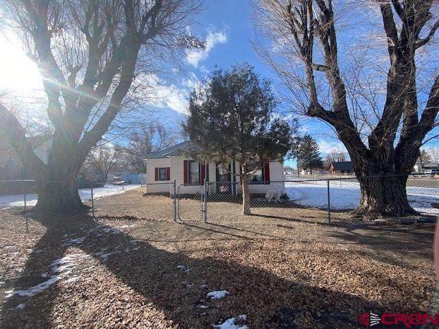 203 Faraday St Street, Monte Vista, CO 81144 (MLS #777862) :: The Dawn Howe Group | Keller Williams Colorado West Realty