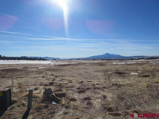 19230 Road 26.2, Dolores, CO 81323 (MLS #777951) :: The Dawn Howe Group | Keller Williams Colorado West Realty