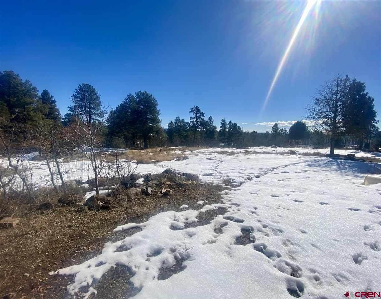 20 Pine Ridge Road - Photo 1