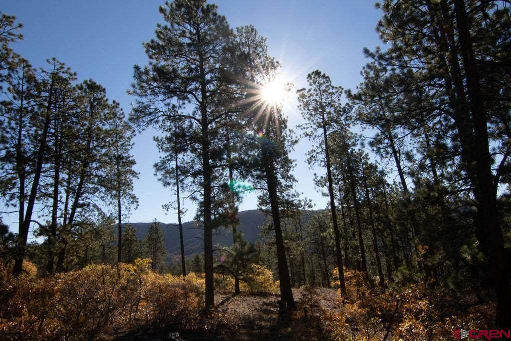 1107 Red Canyon Trail - Photo 1