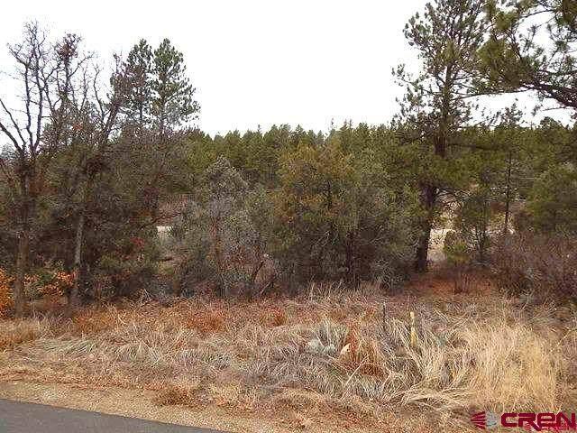 75 Manitou Lane, Durango, CO 81301 (MLS #779770) :: Durango Mountain Realty