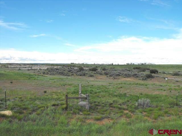 21490 Road 19, Lewis, CO 81327 (MLS #779779) :: The Dawn Howe Group | Keller Williams Colorado West Realty