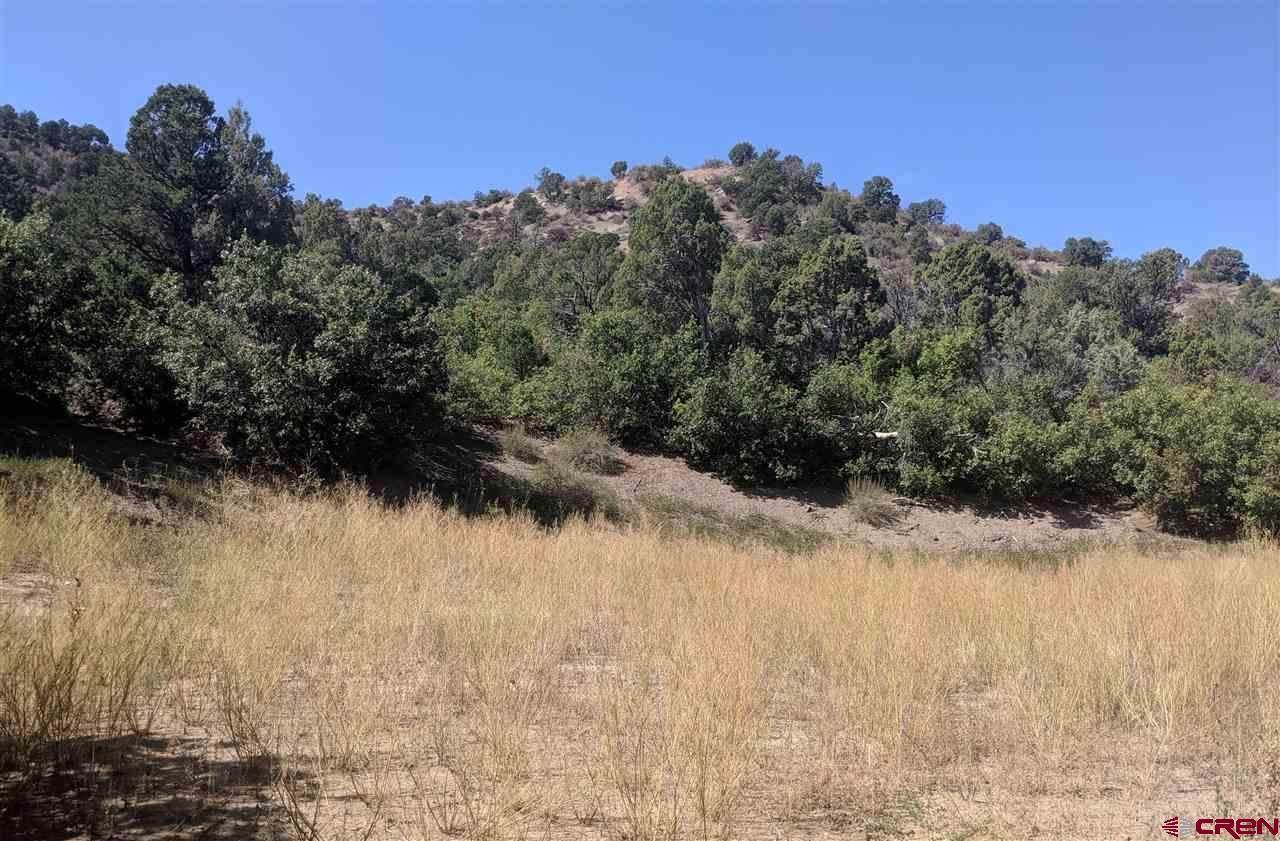 2930 (LOT 4) Rancho Durango Road - Photo 1