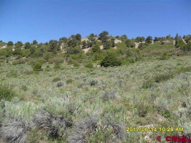 Lot 23 Lone Cone Ranch Sub-Div, Dolores, CO 81323 (MLS #780214) :: The Howe Group | Keller Williams Colorado West Realty