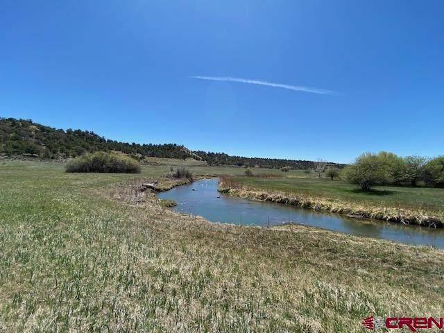 755 Bareback Lane, Durango, CO 81303 (MLS #781869) :: Durango Mountain Realty