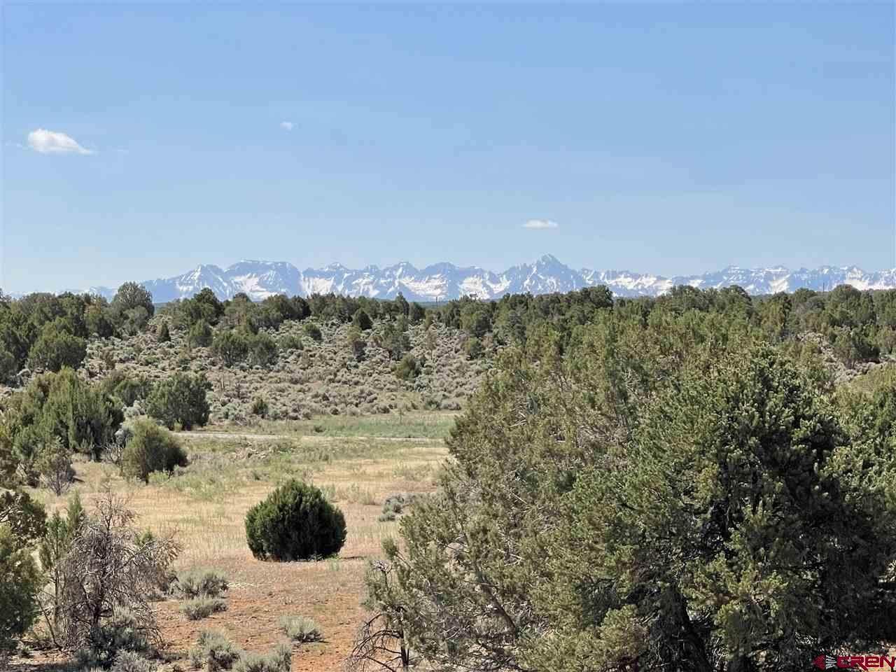 61601 Tres Coyotes Trail - Photo 1