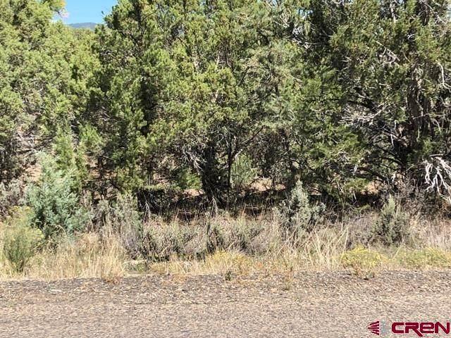 Lots 9-12 Cty Rd 982, Arboles, CO 81121 (MLS #786107) :: The Howe Group   Keller Williams Colorado West Realty