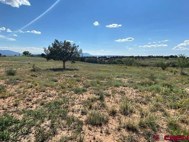 Lot A Road 30.2, Dolores, CO 81323 (MLS #786522) :: The Howe Group   Keller Williams Colorado West Realty