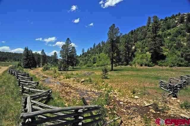 TBD Creek Lot Road 36.5, Mancos, CO 81328 (MLS #786826) :: Berkshire Hathaway HomeServices Western Colorado Properties