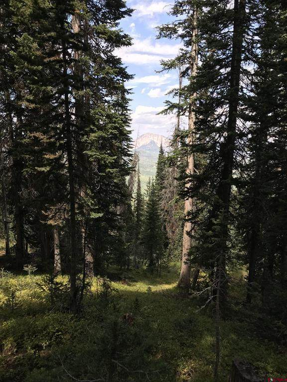 TBD Bracken Creek, Crested Butte, CO 81224 (MLS #786905) :: The Howe Group   Keller Williams Colorado West Realty