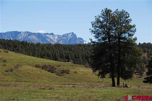 663 Hemlock Pl, Pagosa Springs, CO 81147 (MLS #787141) :: Dawn Howe Group | Keller Williams Colorado West Realty