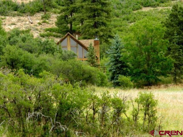 4155 County Road 245, Bayfield, CO 81122 (MLS #787238) :: Berkshire Hathaway HomeServices Western Colorado Properties