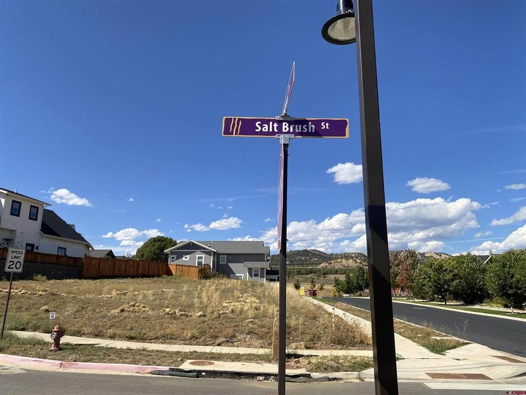 219 Salt Brush Street - Photo 1