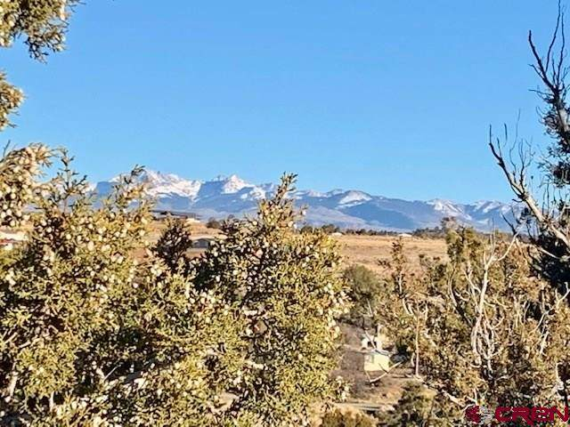 24620 Road V.4 Lot 14, Dolores, CO 81323 (MLS #787307) :: The Howe Group | Keller Williams Colorado West Realty