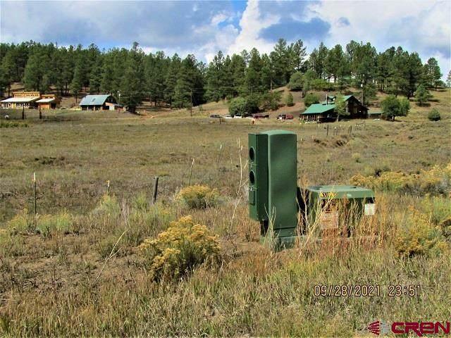 190 Elkhorn Lane, Pagosa Springs, CO 81147 (MLS #787361) :: The Howe Group   Keller Williams Colorado West Realty