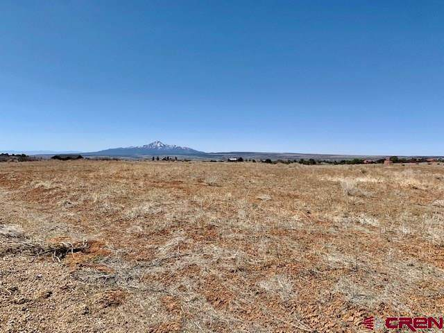 TBD Road 26.4, Dolores, CO 81323 (MLS #787407) :: The Howe Group   Keller Williams Colorado West Realty