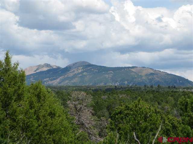 TBD Vista De Oro Parcel 27, Hesperus, CO 81326 (MLS #719013) :: CapRock Real Estate, LLC