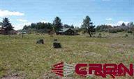 259 Hatcher Circle, Pagosa Springs, CO 81147 (MLS #742402) :: CapRock Real Estate, LLC