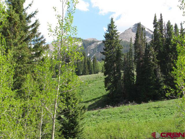 110 Bear Scratch Lane, Mt. Crested Butte, CO 81225 (MLS #744383) :: CapRock Real Estate, LLC