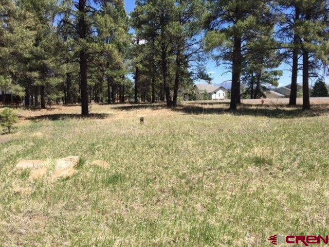 2144 Lake Forest Circle, Pagosa Springs, CO 81147 (MLS #745005) :: Durango Home Sales