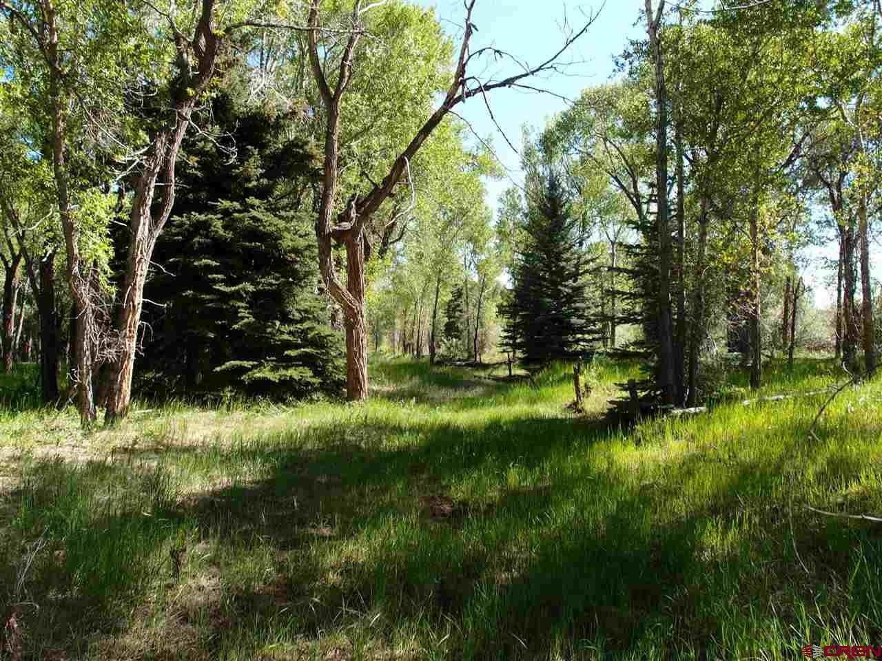 1840 River Island Ranch - Photo 1