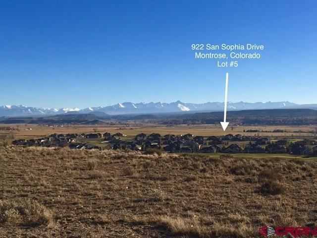 922 San Sophia Drive, Montrose, CO 81403 (MLS #754132) :: Durango Home Sales