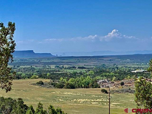 Lot 45 Road V.4, Dolores, CO 81323 (MLS #755671) :: The Howe Group | Keller Williams Colorado West Realty