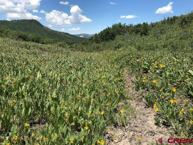 911 Gold Bar, Hesperus, CO 81326 (MLS #758534) :: Durango Mountain Realty