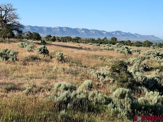 Lot 1 Road 26, Dolores, CO 81323 (MLS #760786) :: The Dawn Howe Group | Keller Williams Colorado West Realty
