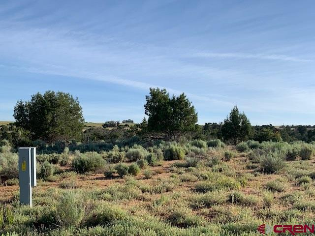 Lot 3 Road 26, Dolores, CO 81323 (MLS #760789) :: The Dawn Howe Group | Keller Williams Colorado West Realty