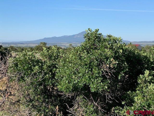 Lot 4 Road U.7, Dolores, CO 81323 (MLS #760790) :: The Dawn Howe Group | Keller Williams Colorado West Realty