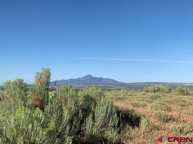 Lot 6 Road U.7, Dolores, CO 81323 (MLS #760792) :: The Dawn Howe Group | Keller Williams Colorado West Realty
