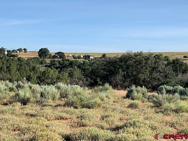 Lot 9 Road U.7, Dolores, CO 81323 (MLS #760796) :: The Dawn Howe Group | Keller Williams Colorado West Realty
