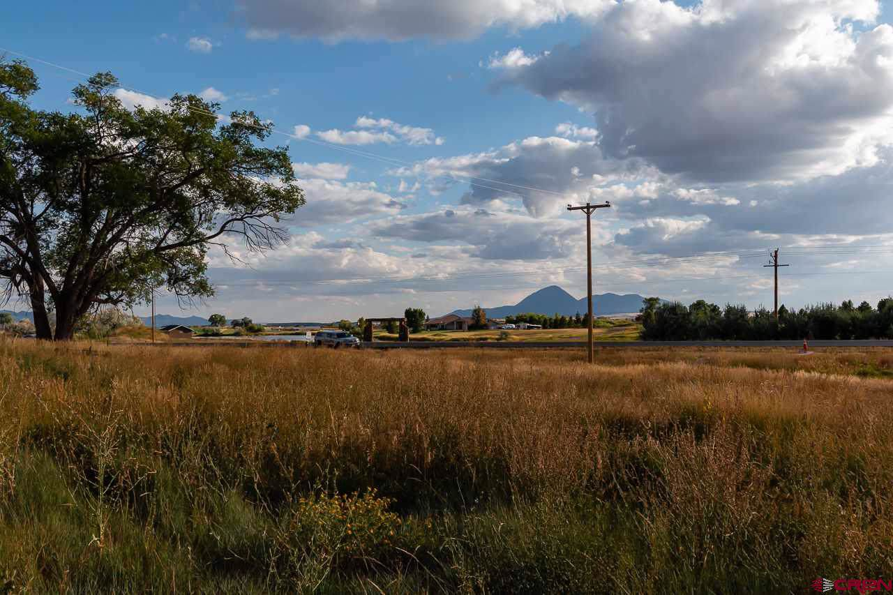 20750 Highway 491 - Photo 1