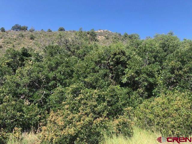 TBD Rancho Mira Sol - Photo 1