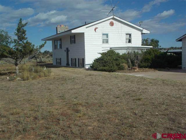 22251 Road N, Cortez, CO 81321 (MLS #771585) :: The Dawn Howe Group | Keller Williams Colorado West Realty
