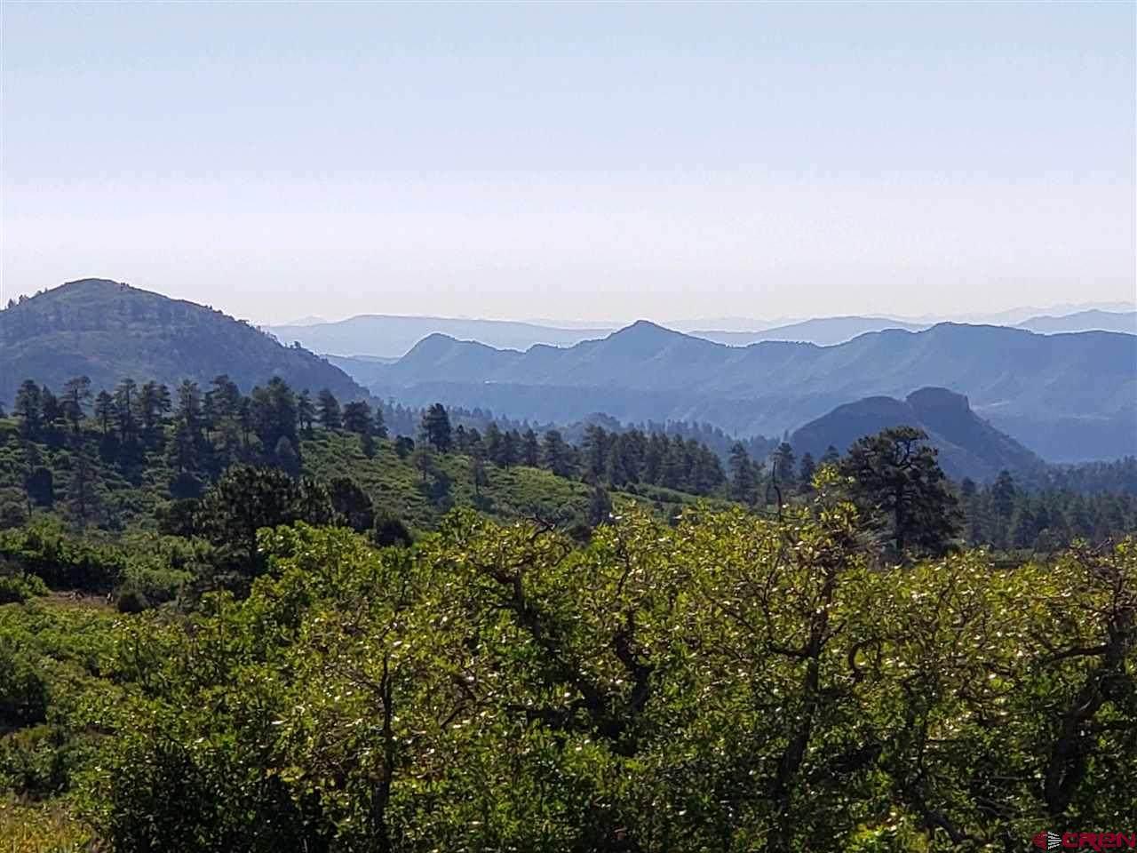606 Perins Peak Lane - Photo 1