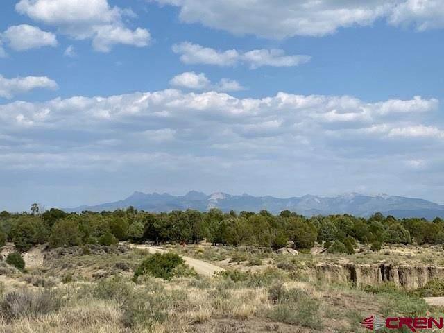 TBD Road 36.7, Mancos, CO 81328 (MLS #774601) :: The Dawn Howe Group | Keller Williams Colorado West Realty